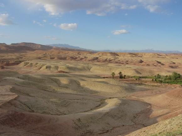 Pětina zemědělské půdy v aridních oblastech je akutně ohrožena zasolením. Zdroj: Radomír Dohnal