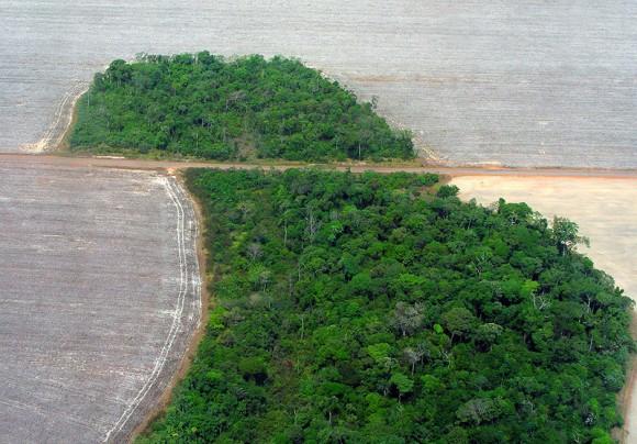 Odlesňování brazilských amazonských pralesů v oblasti Mato Grosso. foto: Pedro Biondi/Abr, licence Creative Commons Attribution 3.0 Brazil