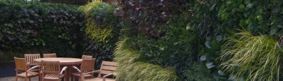 Společnost Biotecture se specializuje na realizace vertikálních zahrad po celém Londýně, foto: Biotecture