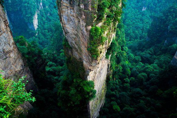 """""""Stromy na skaliscích vNárodním parku Zhangjiajie. Takové žádná celonárodní reforestace bohužel nikdy nenahradí."""" Zdroj: severin.stalder"""