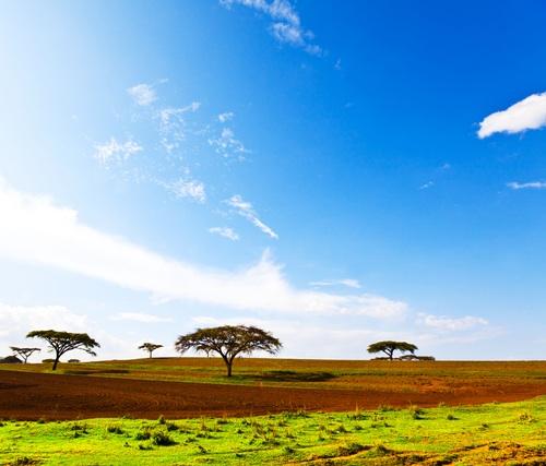 Etiopie jde cestou OZE. Prvních 300 MW solárních instalací do roku 2015 má být jen začátek. Zdroj: GTA