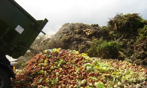 """""""Vyrábíme více, máme větší výběr… a stále více lidí má přitom hlad."""" Zdroj: africagreenmedia.co.za"""