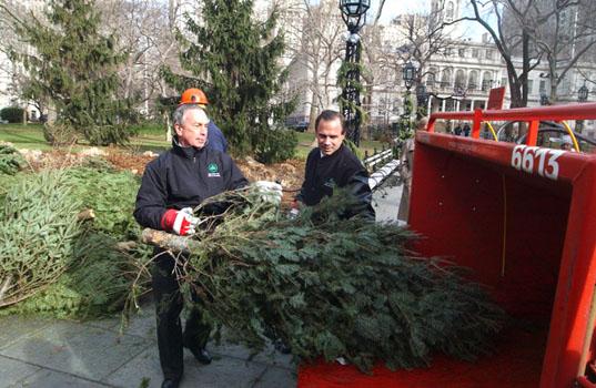 """""""Dobrý skutek v podobě odevzdání usychajícího stromku se vám hned vrátí v podobě kvalitního mulče."""" Zdroj: Birdie NYC"""