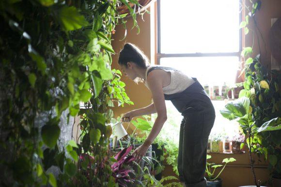 """""""Život v New Yorku by si bez uklidňující zeleně nedokázala Summer Rayne Oaksová vůbec představit."""" Zdroj: Modern Farmer"""
