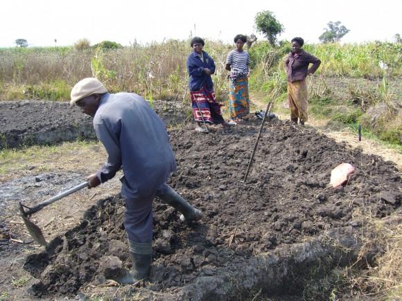 Podmínky pro městské zemědělství v Zambii jsou a lidé je chtějí využívat. Zdroj: Lenka Voleníková