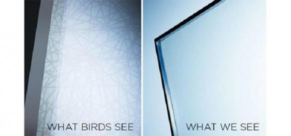 """""""Jak vidíme okno Ornilux my, a jak ho vidí ptáci."""" Zdroj: Ornilux.com"""