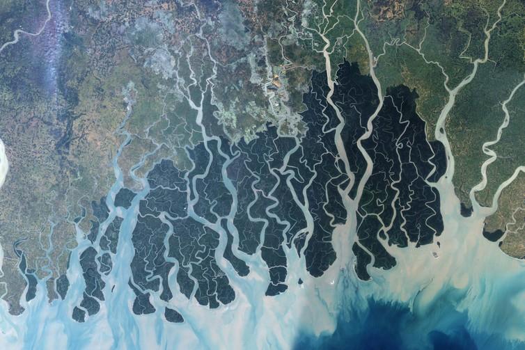 """""""Družicový snímek sundarbanských močálů a mangrovů. Elektrárna by měla vzniknout vpravém horním rohu. """"Zdroj: NASA"""