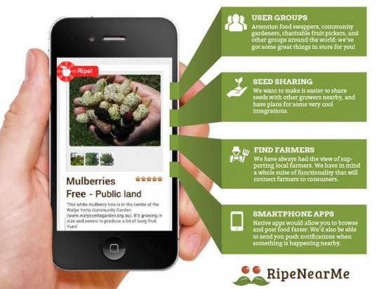 Mobilní aplikace usnadňuje práci malopěstitelům i lidem, co hledají zdravější alternativu ovoce a zeleniny. foto: RipeNear.me
