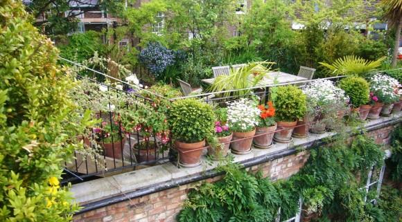 """""""I přes velký počet střešních zahrad, je New York stále závislý na dovozu potravin z okolních států."""" Zdroj:roofgardentips.com"""