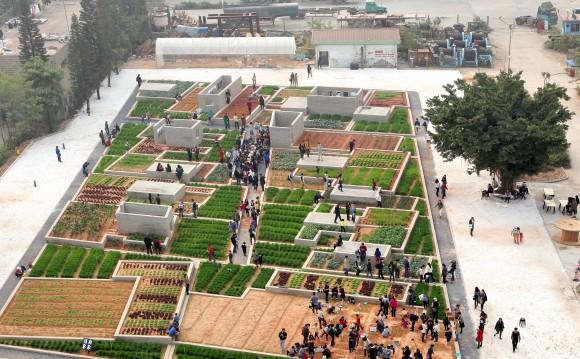 """""""Střechy domů ve městech jsou jako neobdělaná pole,"""" tvrdí architekt projektu Value Farm, Thomas Chung. Zdroj: ArchDaily.com/Value Farm"""