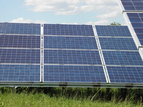 """""""Když už alternativní zdroje energie, tak bych chtěl vidět víc domácích střešních elektráren,"""" říká australský senátor."""" Radomír Dohnal"""