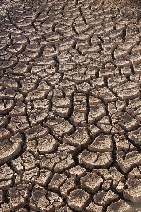 Vysychající půda na hranicích Sonorské pouště v Mexiku. Dopadne Kalifornie stejně?  Zdroj: Tomas Castelazo/ en.wikipedia.org/ CC BY 3.0