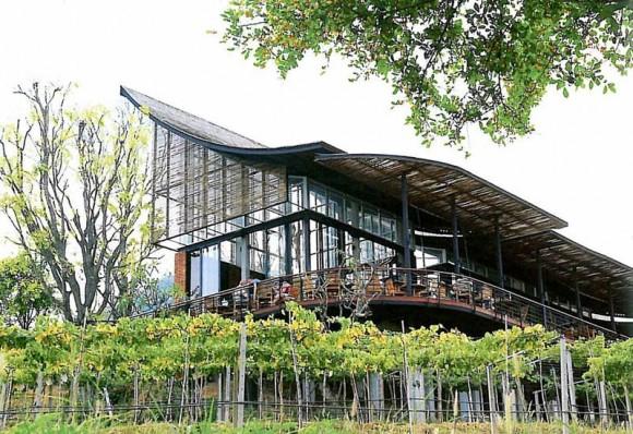 """""""Základem přirozené klimatizace je správná orientace budovy ke světové straně a práce sprouděním větru."""" foto © Soh Design Studio"""