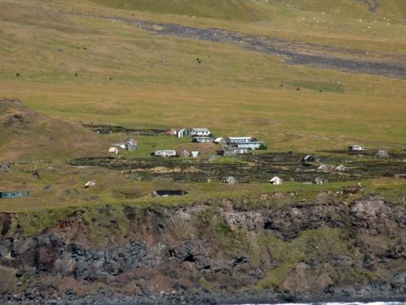 """""""Ostrůvek Tristan da Cunha, kde žije víc ovcí a krav, než lidí."""" Zdroj: Mark Clarke/Wikimedia"""