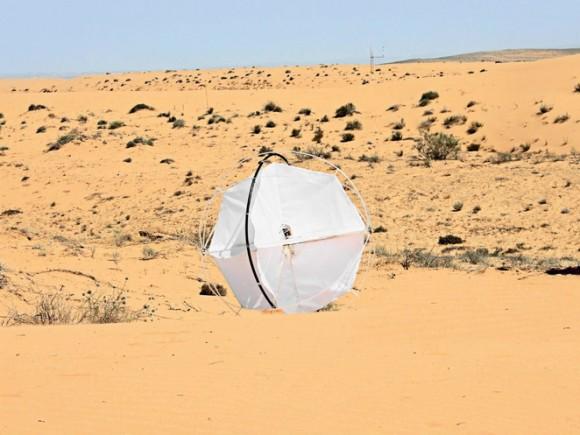 """""""Roj několika Tumbleweed dokáže vytvořit trojrozměrný model aktuální oblasti pouště."""" Zdroj: Shlomi Mir"""