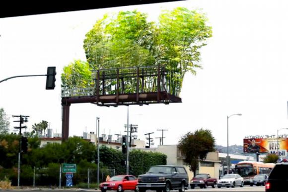 Namísto reklam zelené zahrady z bambusů. Zdroj: Stephen Glassman