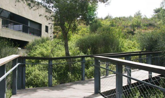 """""""Zeleň, kam se podíváš. Studentská vesnička vHaifě připomíná bungalovy vpřírodě."""" Zdroj: Schwartz Besnosoff Architects"""