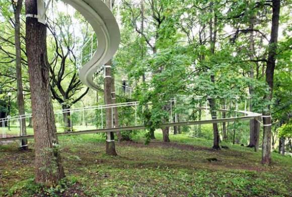 Stezka Vás vynese až ke korunám stromů. Zdroj: Tetsuo Kondo