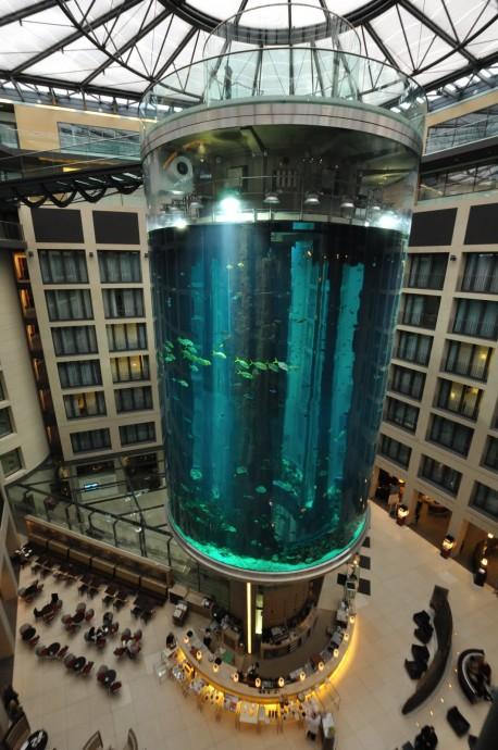 Chybí vám moře, ale trpíte mořskou nemocí ? Vzhůru do Berlína. Zdroj: inhabitat.com