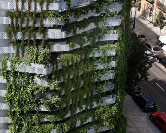 Zelený vodpád proměnil rušné centrum Barcelony k nepoznání. Zdroj: domusweb.it
