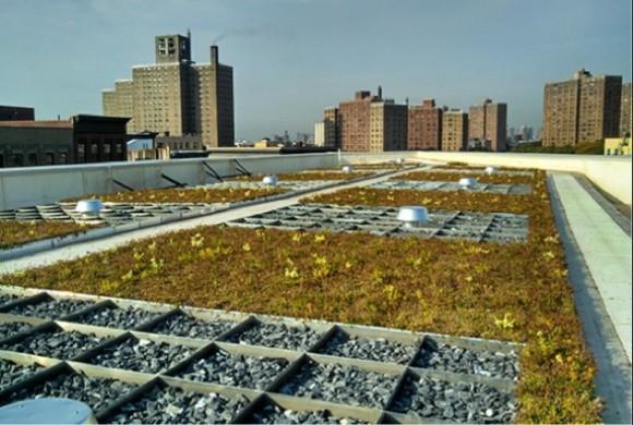 """""""Modrá zpomaluje odtok dešťové vody a zelená dává prostor pro existenci včel. Dvě barvy pro život ve městech."""" Zdroj: Hazen&Sawyer"""