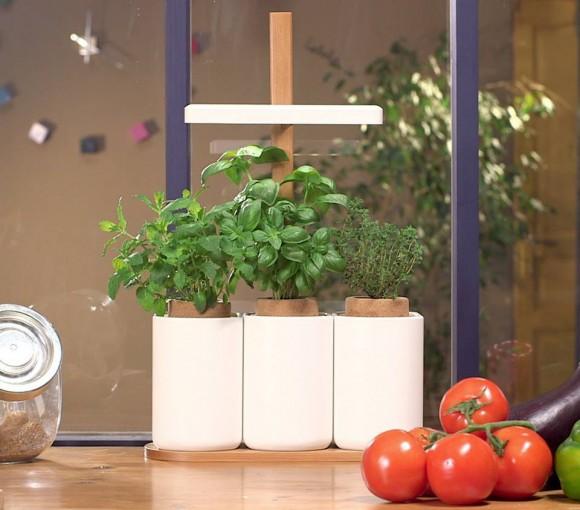 Produkt Lilo se snaží usnadnit bylinkaření těm, kteří si na opravdový záhonek netroufají. Zdroj:  L Pret a Pousser