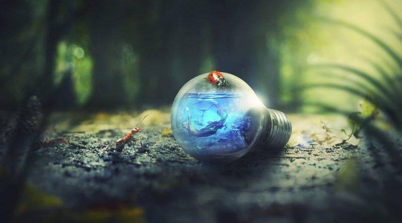 LED žárovky šetří životní prostředí. Zdroj: Pixabay.com