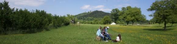 Oblast kolem Starého Jičína, kde Michal Martoch plánuje založit projekt spolubydlení 9 Pramenů, nabízí krásnou přírodu, foto: 9 Pramenů