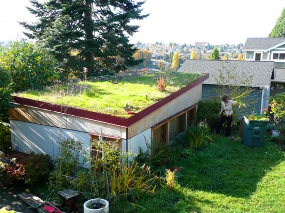 Pořídit si zelenou střechu není až tak složité, a výsledná úspora je přitom hmatatelná. Zdroj: ecofriend.com
