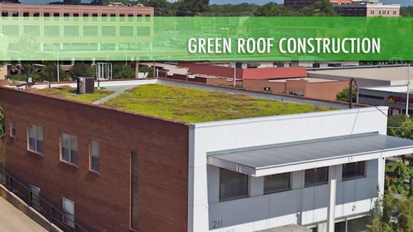 """""""První zelená střech vDurhamu, instalovaná vroce 2002."""" Zdroj: XeroFlorAmerica"""