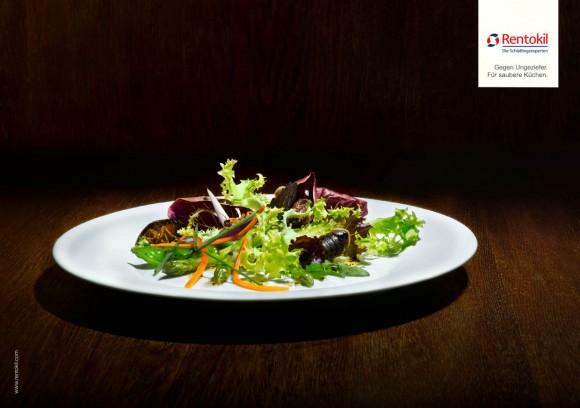 Na jídelníčku Pestaurantu byste našli hned několik dobrot, pocházejících ze švábů. Zdroj: rentokil.com