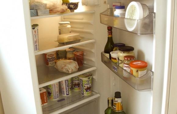 Lednička je všudypřítomný domácí elektrospotřebič. Narozdíl od mobilu vydrží déle než dva roky. Přesto je na konci životního cyklu třeba ji zlikvidovat. foto: Ekologické bydlení