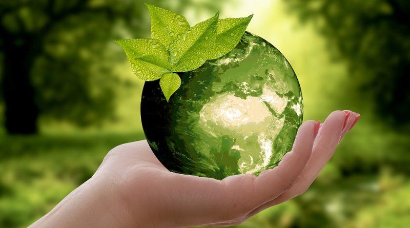 Jak dosáhnout na ekologicky šetrnější domácnost? Máme pro vás 5 tipů!