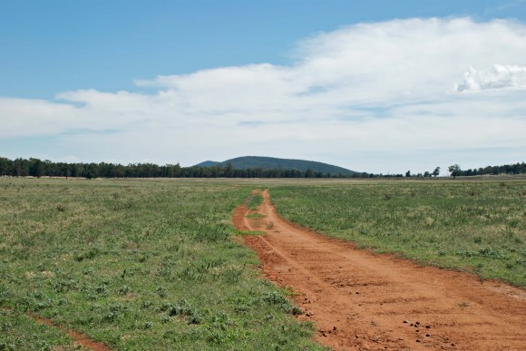 Vyplývá návrh projektu EPA z logiky věci, že je lépe využívat jinak nepoužitelnou půdu? Zdroj: lonewolfsh/sxc.hu