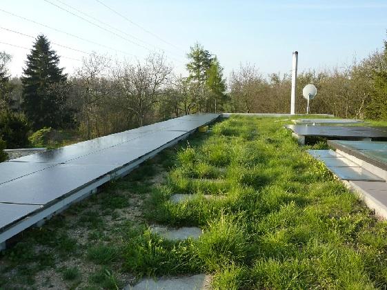 Solární panely na zelené střeše po které se dá chodit, foto: Pavel Fojt
