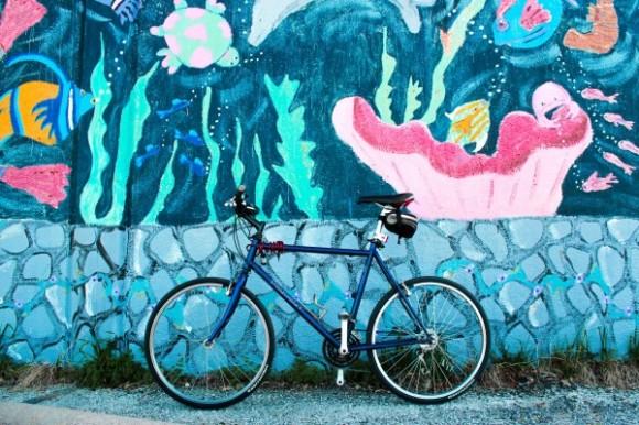 Jízdní kola začínají být také ve Spojených státech populárním dopravním prostředkem. foto: Peopleforbikes.org