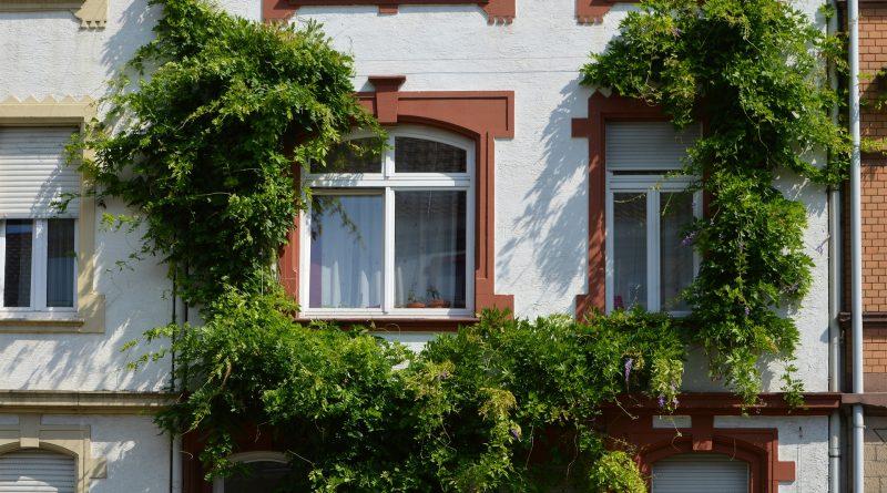 Plastová okna se těší stále větší oblibě.