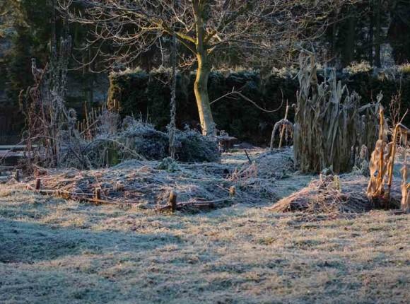 Přírodní zahrada Tomáše Svobody v zimě, foto: Tomáš Svoboda