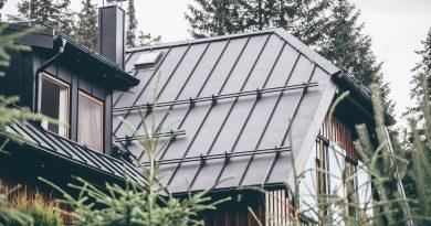 Kvalitu finských střech Ruuki si můžete prověřit na veletrhu Střechy Praha. foto: Ruuki