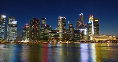 Městský stát Singapur patří k nejrozvinutějším v jihovýchodní Asii. foto: cegoh, licence public domain