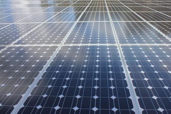Solární panely a celé solární elektrárny budou teď v Japonsku horkým zbožím. O výrobu většiny z nich se postará Čína. foto: DebbieMous/sxc.hu