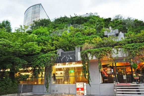 Visuté zahrady vytvářejí na budově ACROS skutečný ostrov zeleně. foto: ACROS
