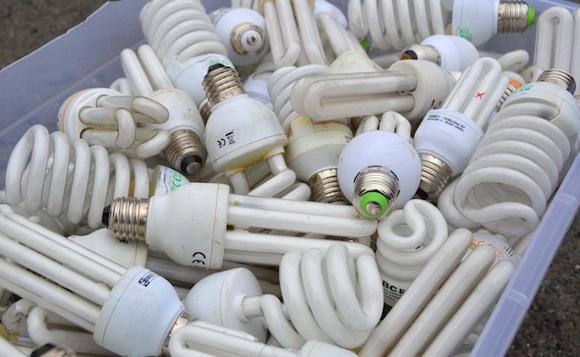 Úsporné žárovky - Češi jich recyklují čím dál tím více, foto: EKOLAMP