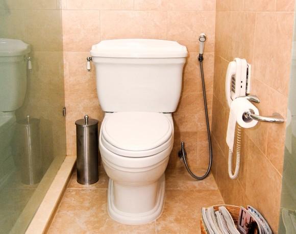 Záchod - toaleta - dočkáme se energetického využití lidské moči? foto: sxc.hu/agrelli