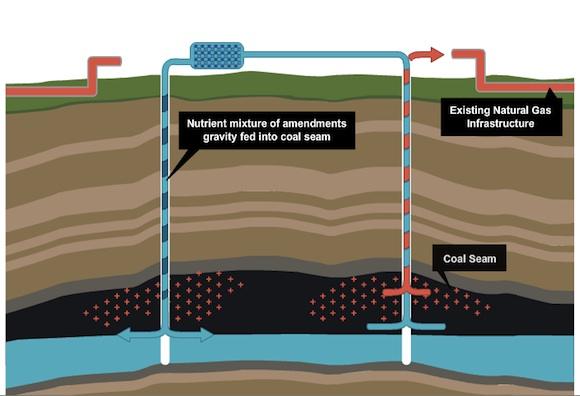 fosilní paliva - těžba zemního plynu - bakterie