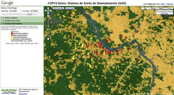 Google - odlesňování - software