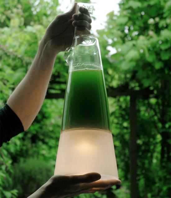 Osvětlení - biolampa mořské řasy