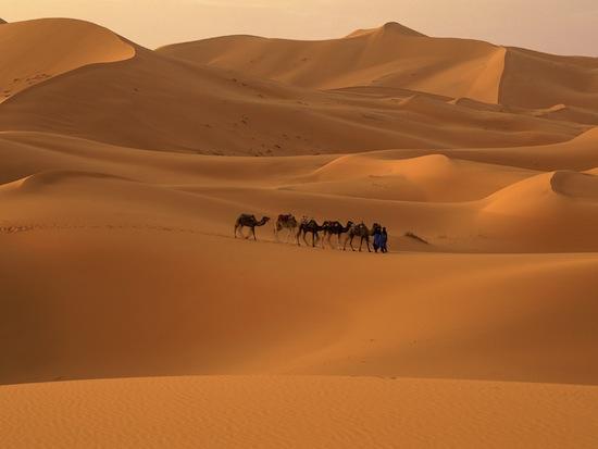 Sahara - poušť v Maroku
