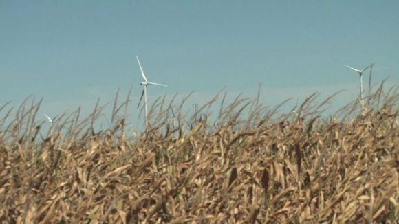 Větrné elektrárny v lánu obilí