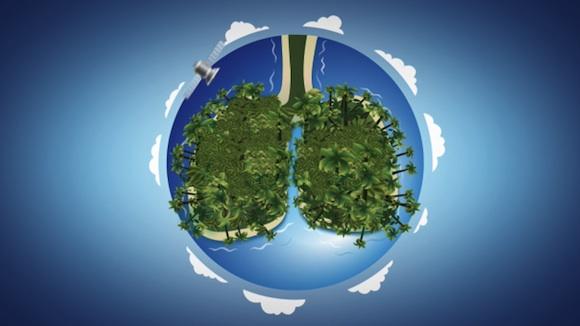 web - internetový vyhledávač Ecosia